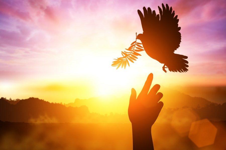 Pacea sufleteasca ce se dobandeste
